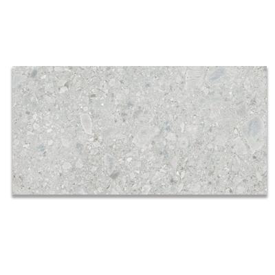 Ceppo Di Gre` Stone LightGray | پرسلان | 60در120 | راک سرامیک